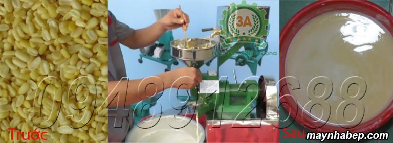 Đậu xanh đãi vỏ được nghiền thành bột nước từ Máy xay bột nước 3A370W