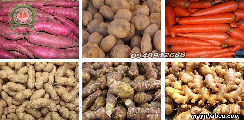 Một số loại củ nông sản được rửa bằng Máy rửa củ quả bằng sơ dừa 3A3KW