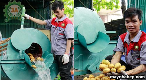 Nguyên liệu sau khi sử dụng Máy rửa củ khoai, củ nghệ, củ nông sản 3A XD500