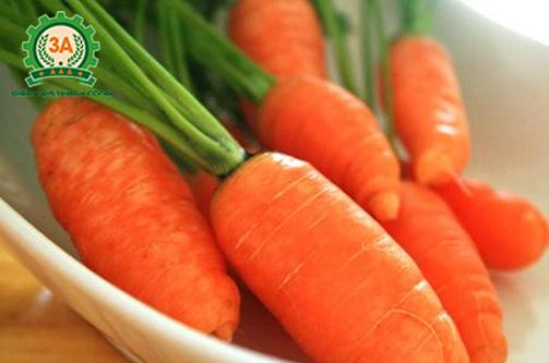 tác dụng của cà rốt, lợi ích của cà rốt,
