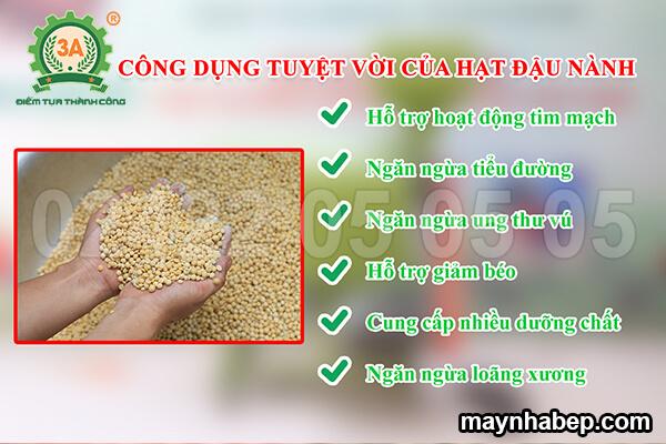 Máy tách vỏ lụa đậu nành khô 3A4kW (06)
